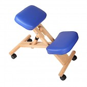 Ортопедический стул GESS VERTEBRA